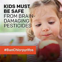 Image result for chlorpyrifos and brain damage in children