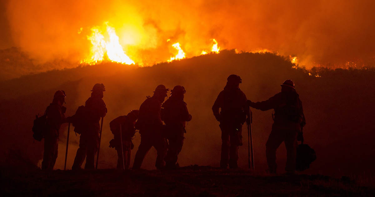 Forest fire and firefighters