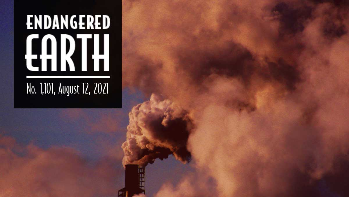 Smokestack billowing pollution