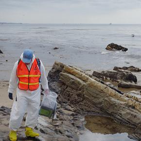 Biologist at Refugio oil spill site