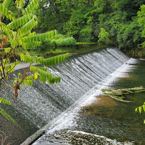 Van Reed Paper Mill Dam