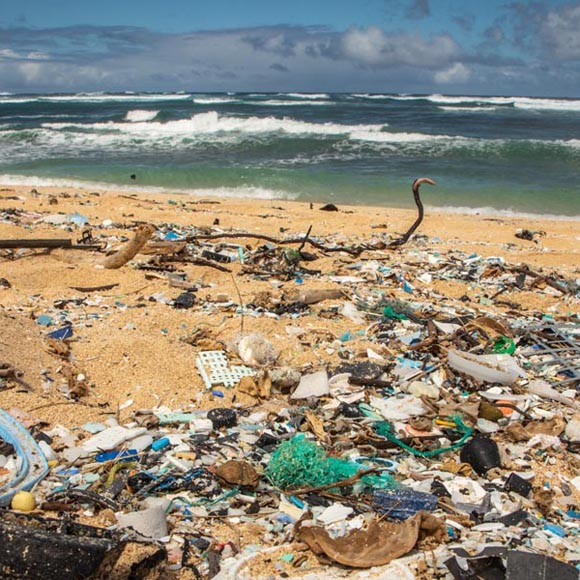Plastic pollution, Hawaii