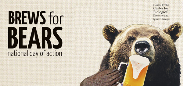 Brews for Bears