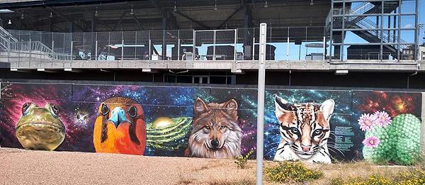 Endangered Species mural in El Paso, Texas