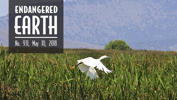 Klamath Basin National Wildlife Refuge Complex