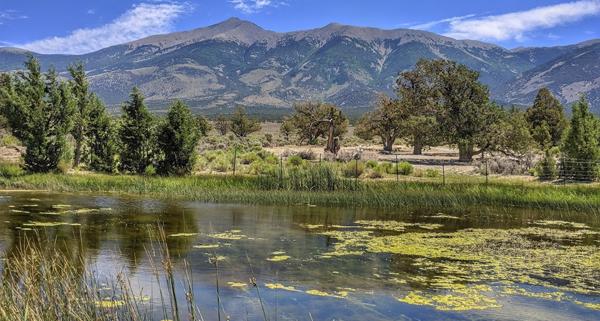 Shoshone Ponds in Spring Valley, Nev.