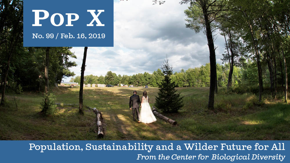 Pop X: Get Hitched Without Killing the Planet