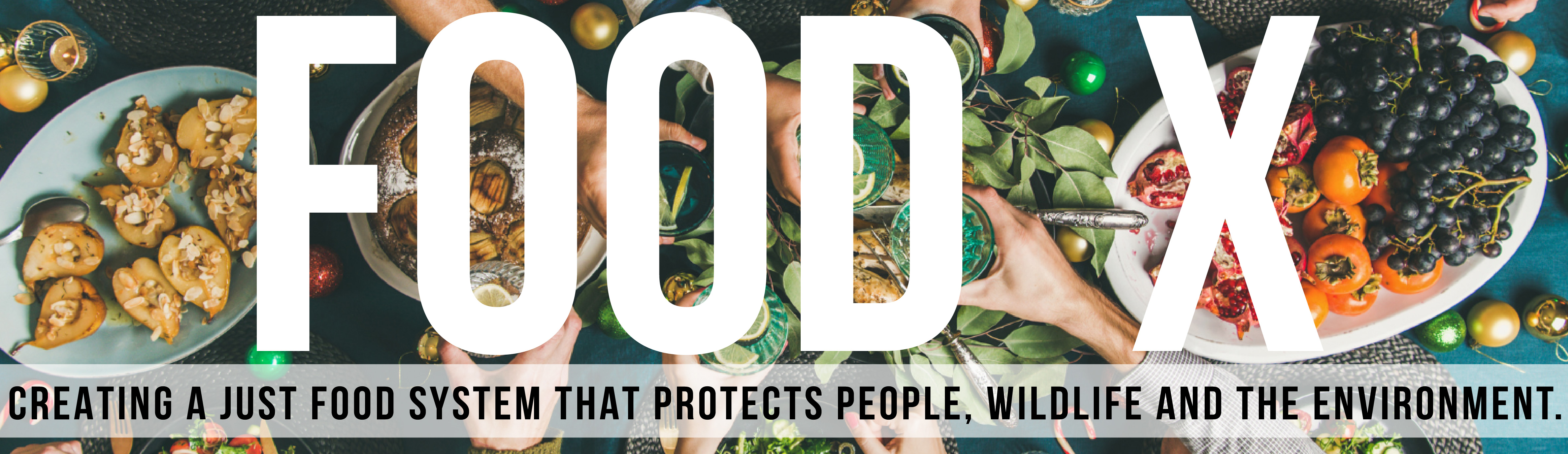 Food X: Creating a Just Food System That Protects People, Wildlife and the Environment.