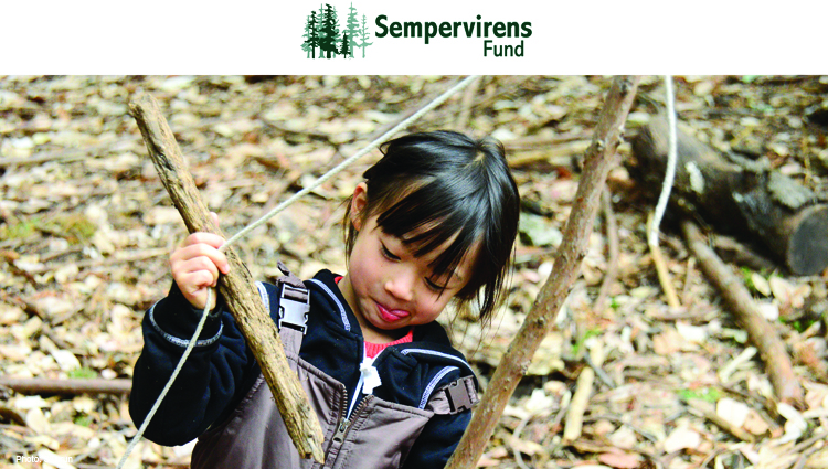 Sempervirens Fund