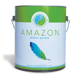 Amazon Paint