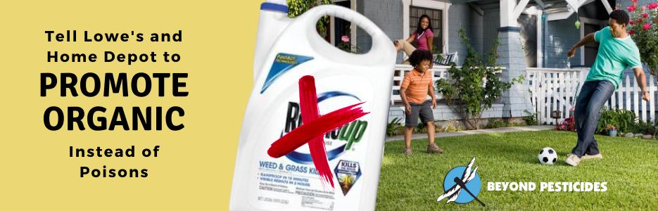 Beyond Pesticides