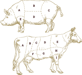 meat-cuts%20smaller.png