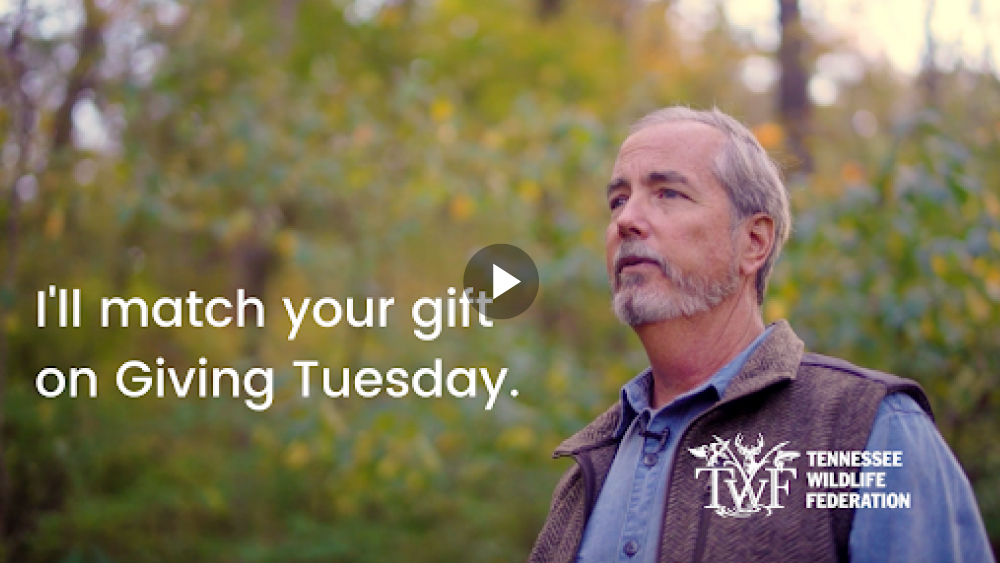 VIDEO: I'll match your gift on Giving Tuesday