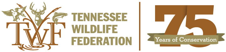 Tennessee Wildlife Federation | 75 years of conservation
