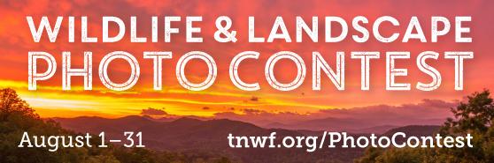 Wildlife & Landscape, Photo Contest August 1–31, tnwf.org/PhotoContest