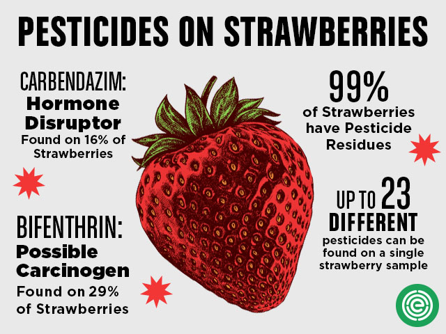 Pesticides on strawberries