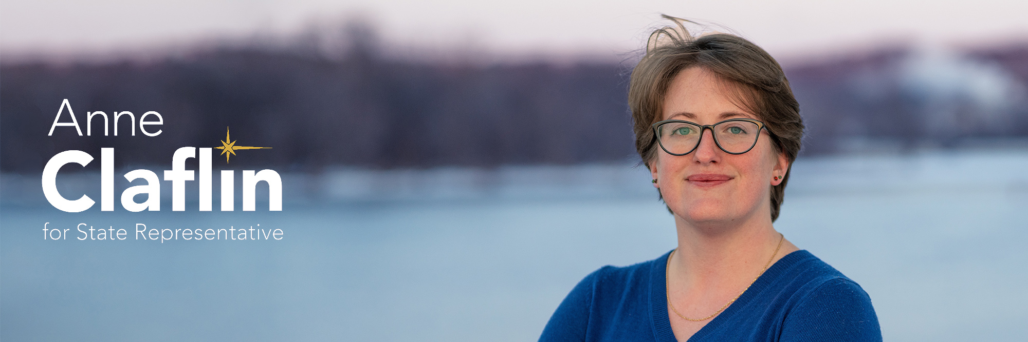 Anne for MN House