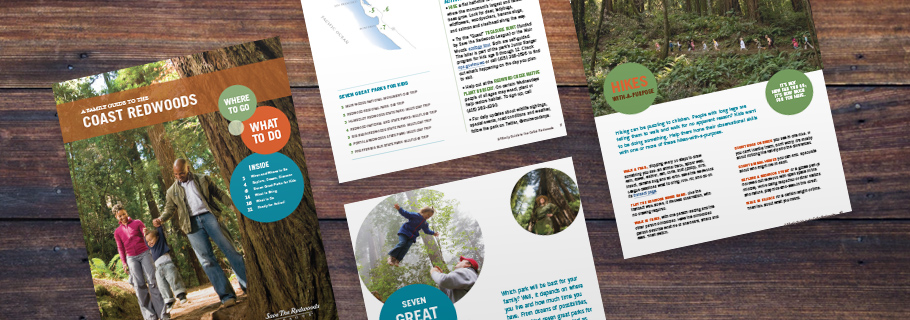FREE FAMILY GUIDE TO THE COAST REDWOODS