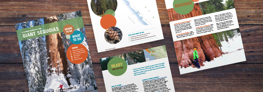FREE FAMILY GUIDE TO THE GIANT SEQUOIAS