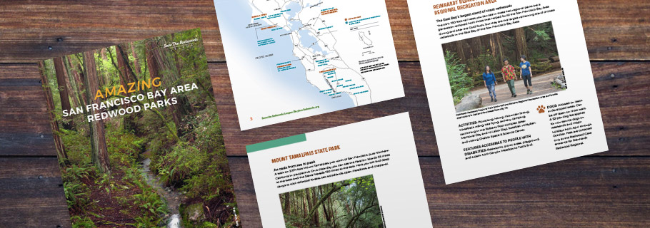 FREE GUIDE: AMAZING SAN FRANCISCO BAY AREA REDWOOD PARKS