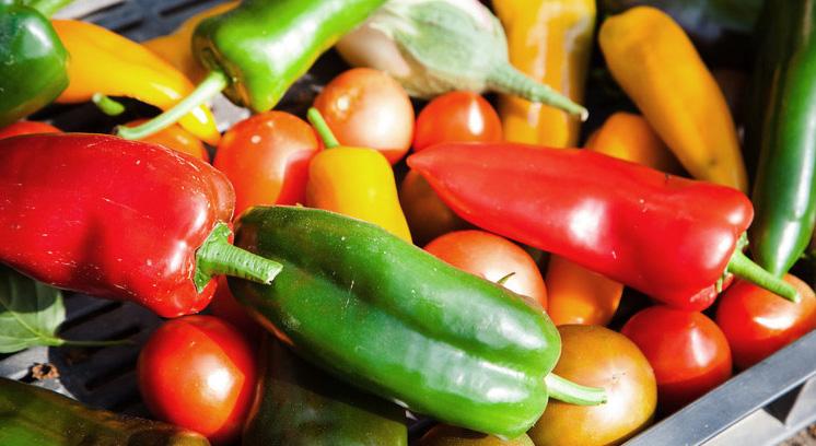 Demand supermarkets reduce plastic packaging! - Greenpeace